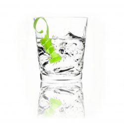 Squamata Drink1 White
